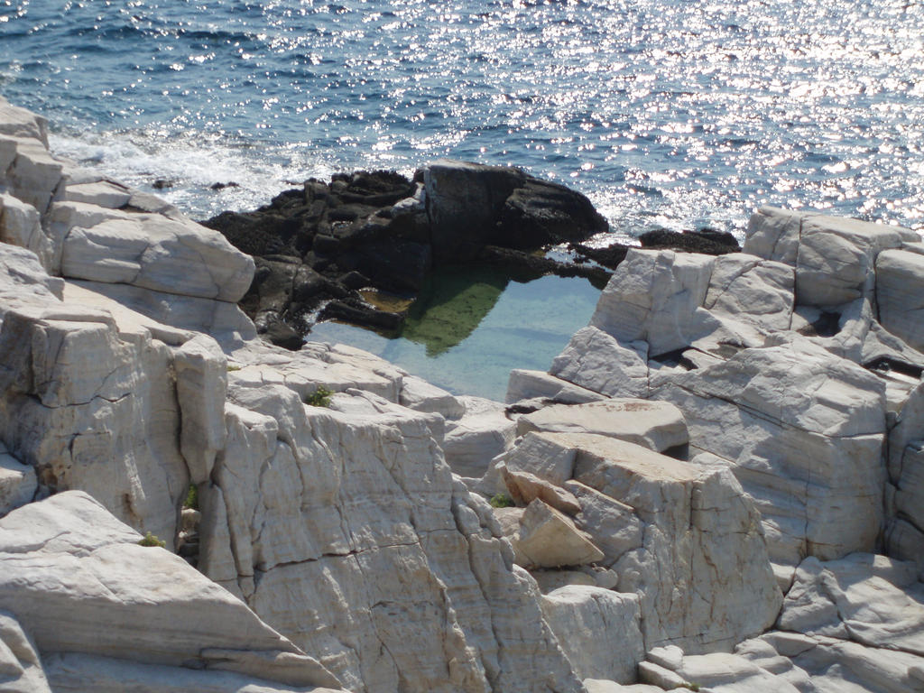 natural pool by filiaki