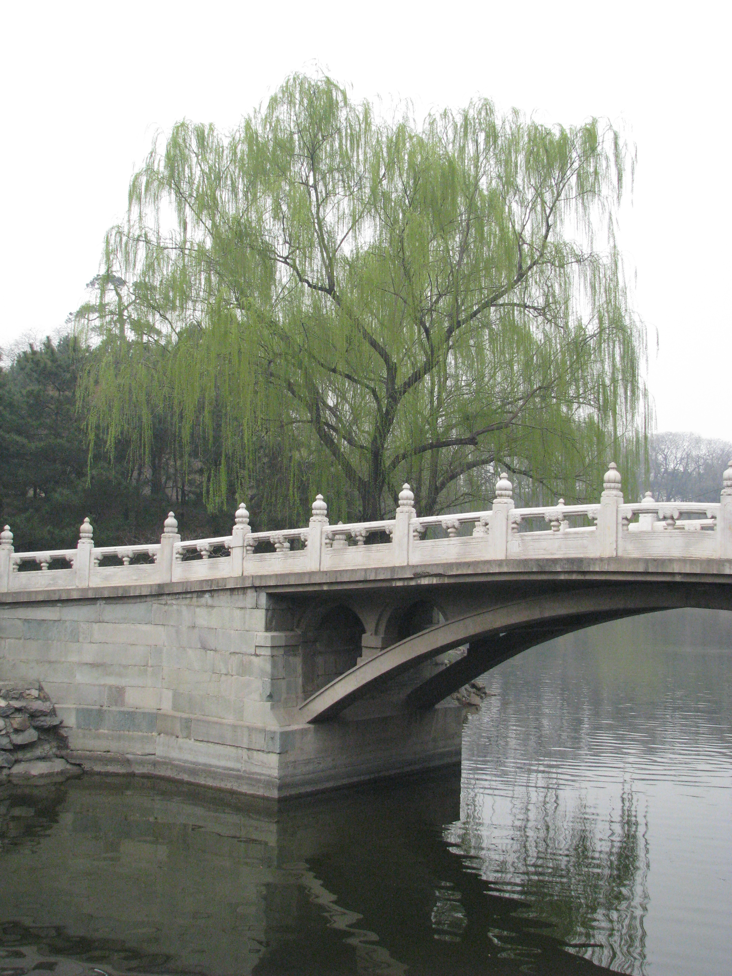 Oriental Bridge 02