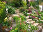 Rock Garden 01