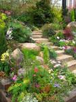 Rock Garden 02