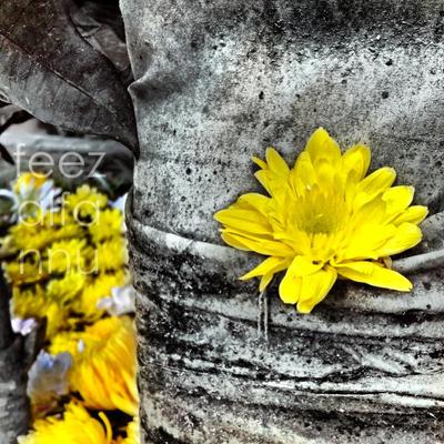 Yellow by CatastroPheez