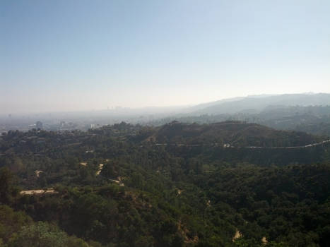 LA from the Observatory
