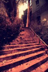 Stairs in The City / Free Stock Picture