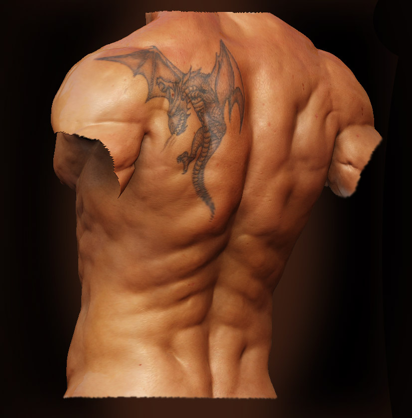 Male Anatomy - Back02 by shoaibMalik on DeviantArt