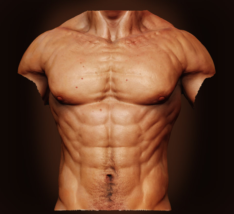 Male Anatomy Front 01 By Shoaibmalik On Deviantart
