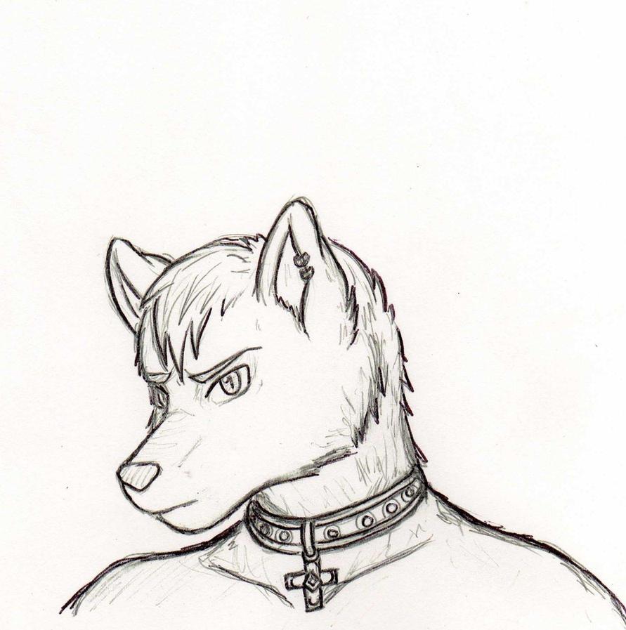 Wolf Anthro Boy Anthro Wolf by Rhea202