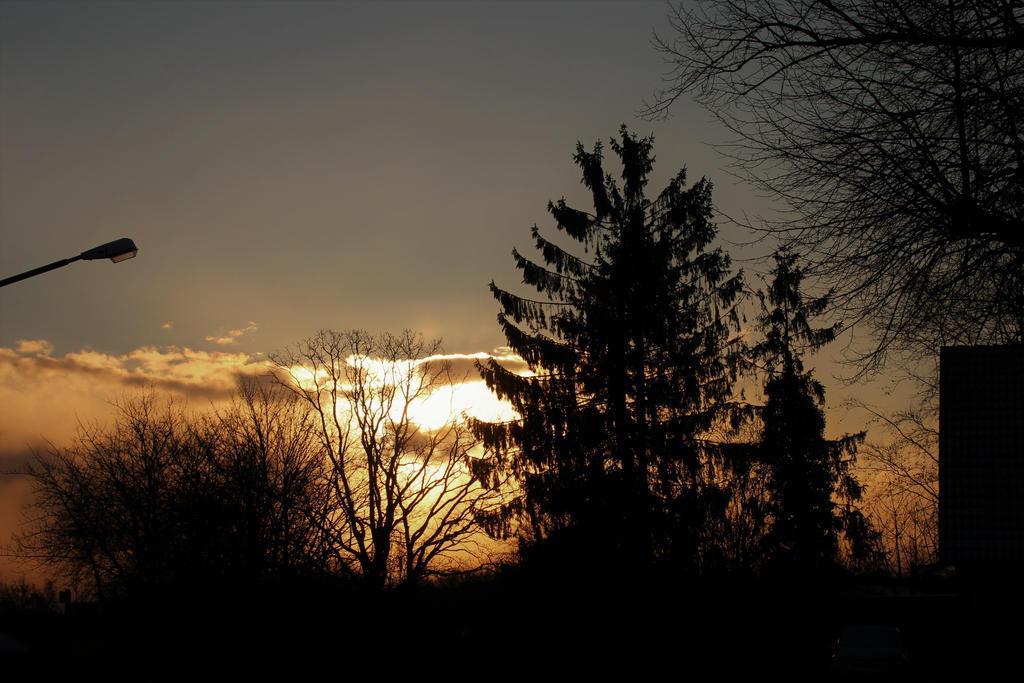 Sunrise by Aylany