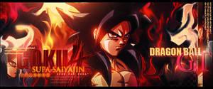 Sign' Goku ssj4