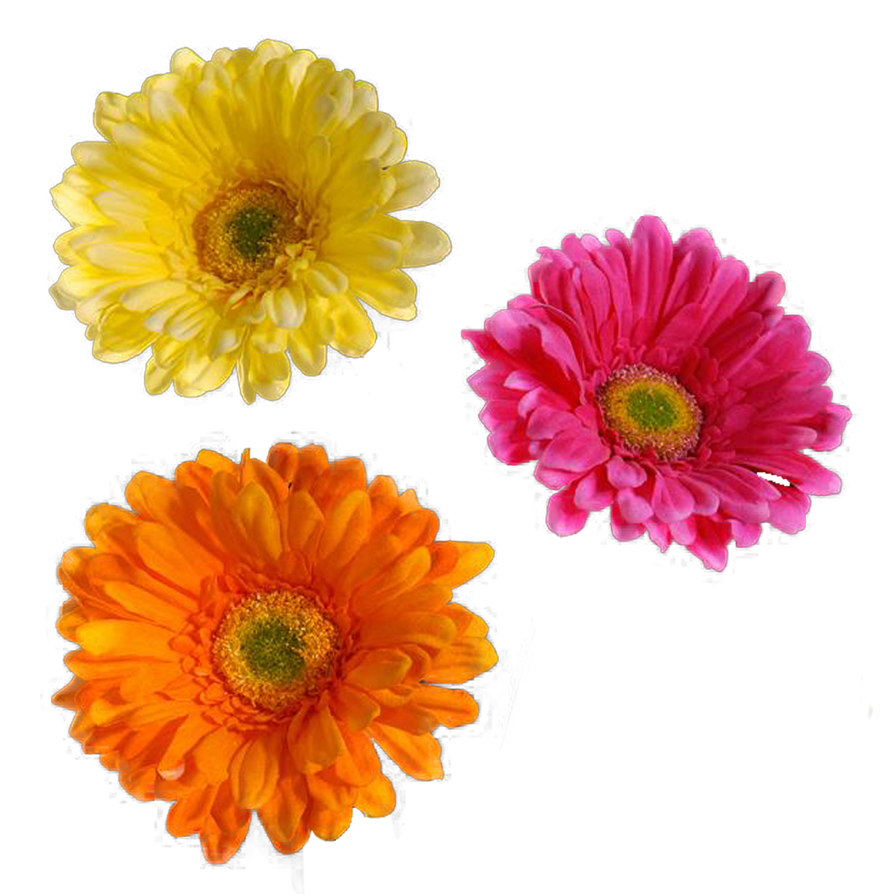 Real Flowers Png Flower 001 - Clear Cut...