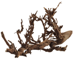 Plant Roots 001 - Clear Cut PNG by Travail-de-lame