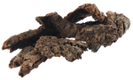 Plant Roots 002 - Clear Cut PNG