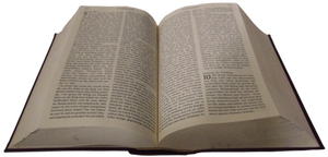 Holy Bible 005 - Clear Cut