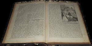 Book of 1877 - 001 - Clear Cut