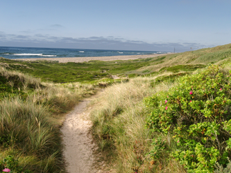 Sylt-07-21-2013 EDITED by Travail-de-lame