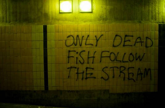 Only dead fish follow the stream...