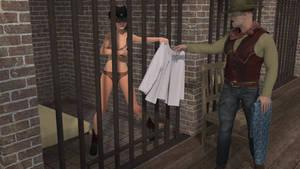 Wild West Arrest 4