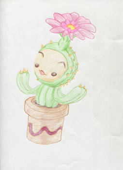 Li'l Cactus