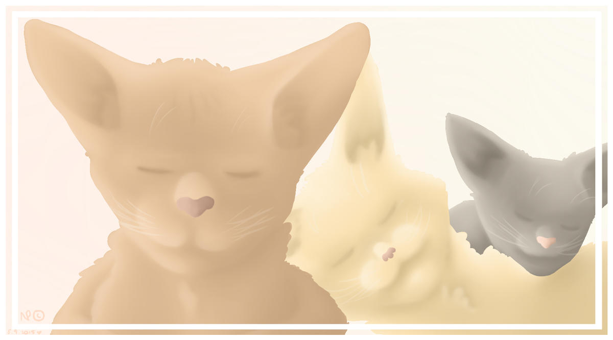 3 cats by Nooraxc