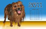 Pom Calender Feb2 widescreen by TheDazman