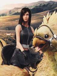 ! Chocobo Ride - Tifa ! by Sreliata