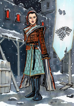 Arya Stark at Winterfell