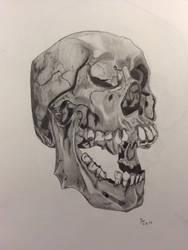 Atomiccircus's Skull Study Contest B/W by BillyDoubleU