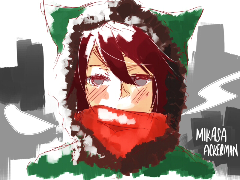Mikasa Ackerman [Doodle] by Mitchi-ru