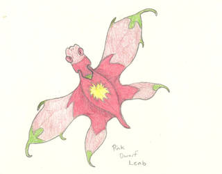 Pink Dwarf Leab by Allomals