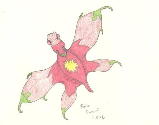 Pink Dwarf Leab