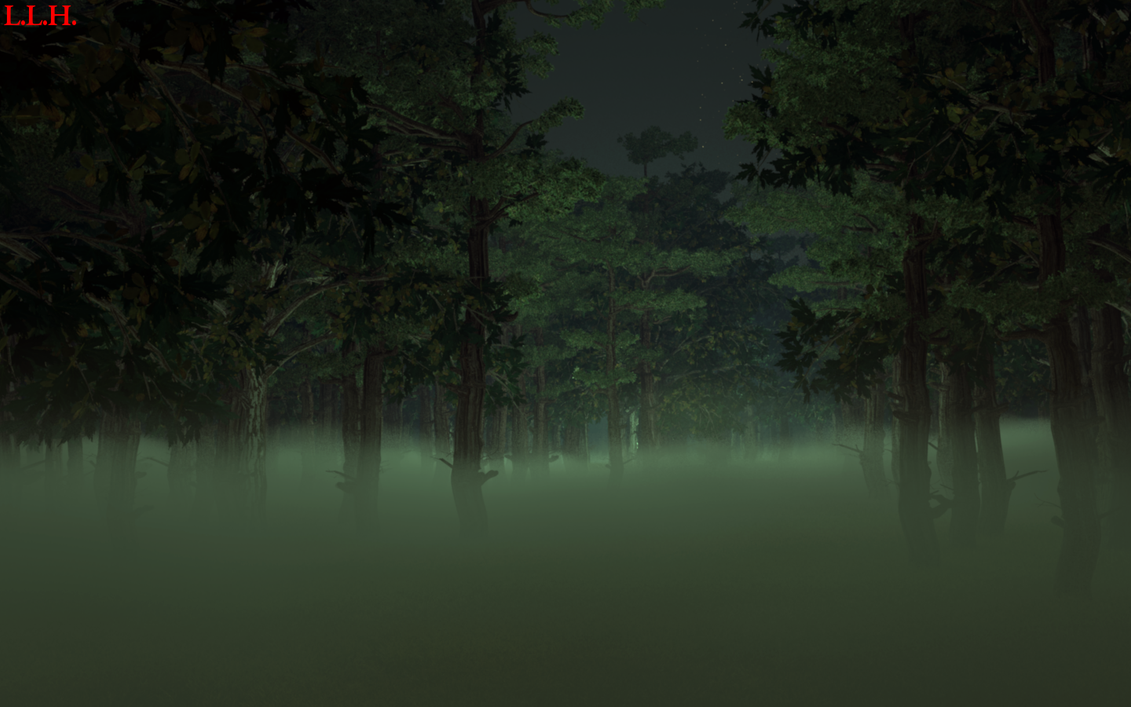 foggy forest by a - photo #26