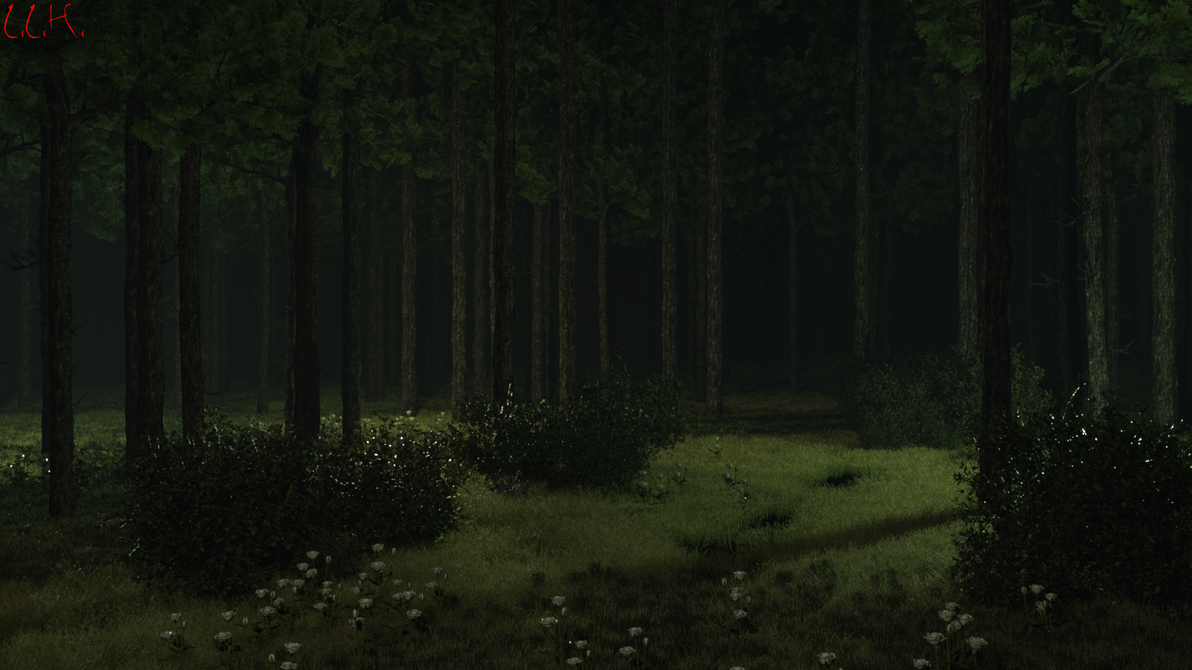 Forest Secret Place Forest Dark Lights D Wallpapers for HD