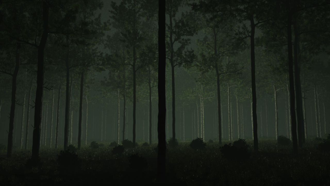 Eerie light-forest by Zlain81 on DeviantArt