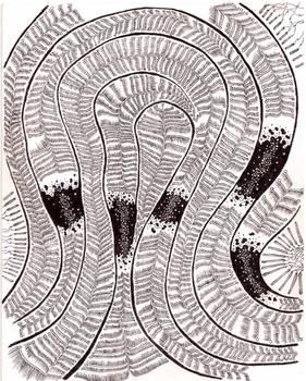 Fossils II