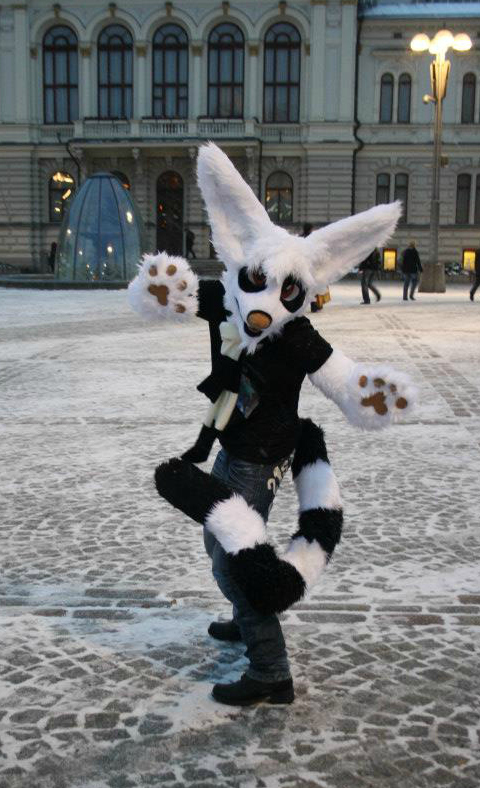 Fursuit - Mika the lemurcat by RaviTheBlueTiger