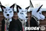 Commission head - Raiden the fox