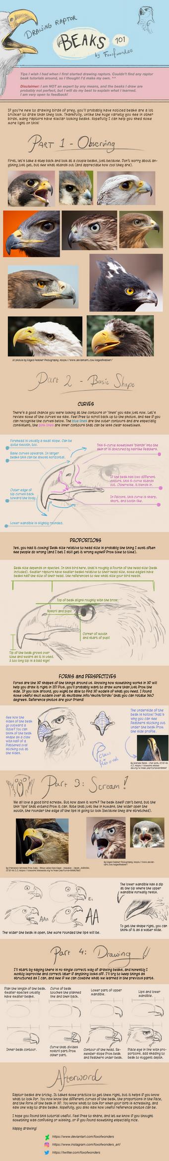 Raptor Beaks Tutorial