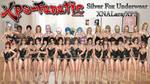 DOA5R - Silver Fox Underwear for XNALara/XPS by XPS-Fanatic