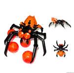MOC: Salticidae