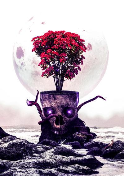 skull by yhenz
