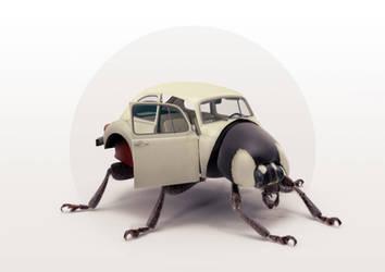 beetle by yhenz