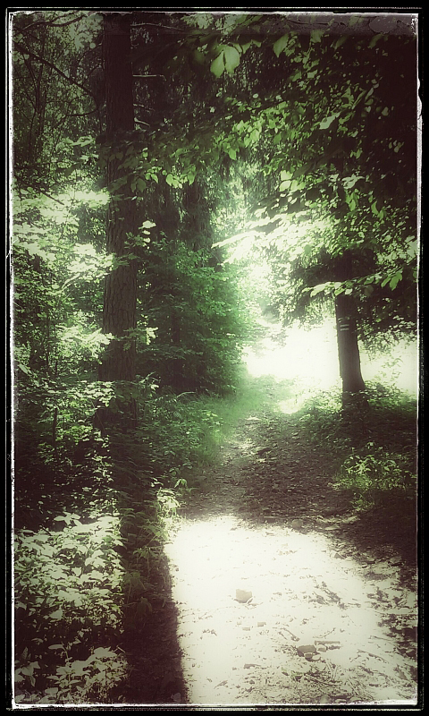 rituals III by Daimonion-in-Sound