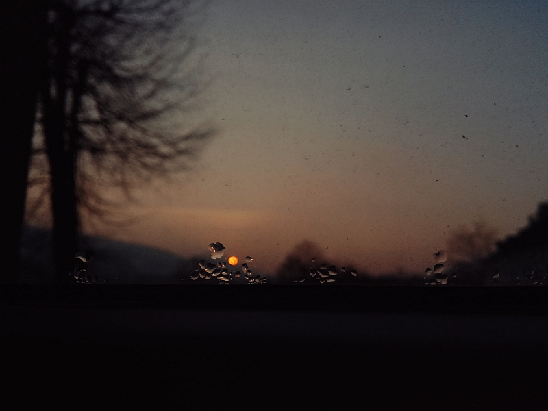 Sunset Asylum by Daimonion-in-Sound