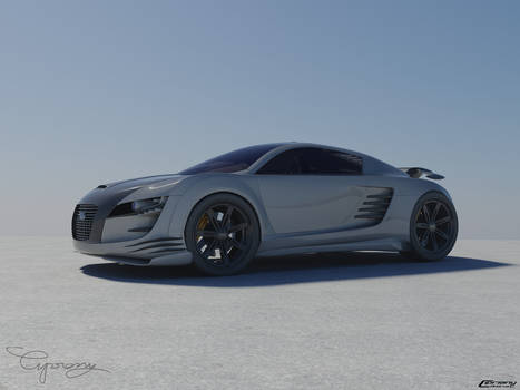Audi RSZ desert