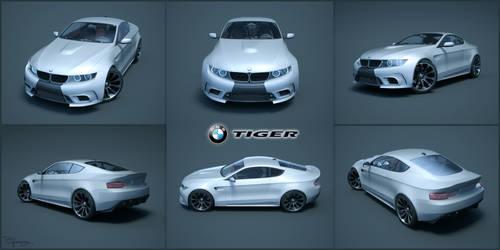 BMW Tiger - Concept 9