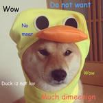 No Duck Shibe