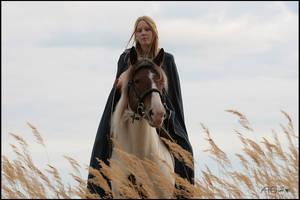Noldor in Beleriand 23 by meneldil-elda
