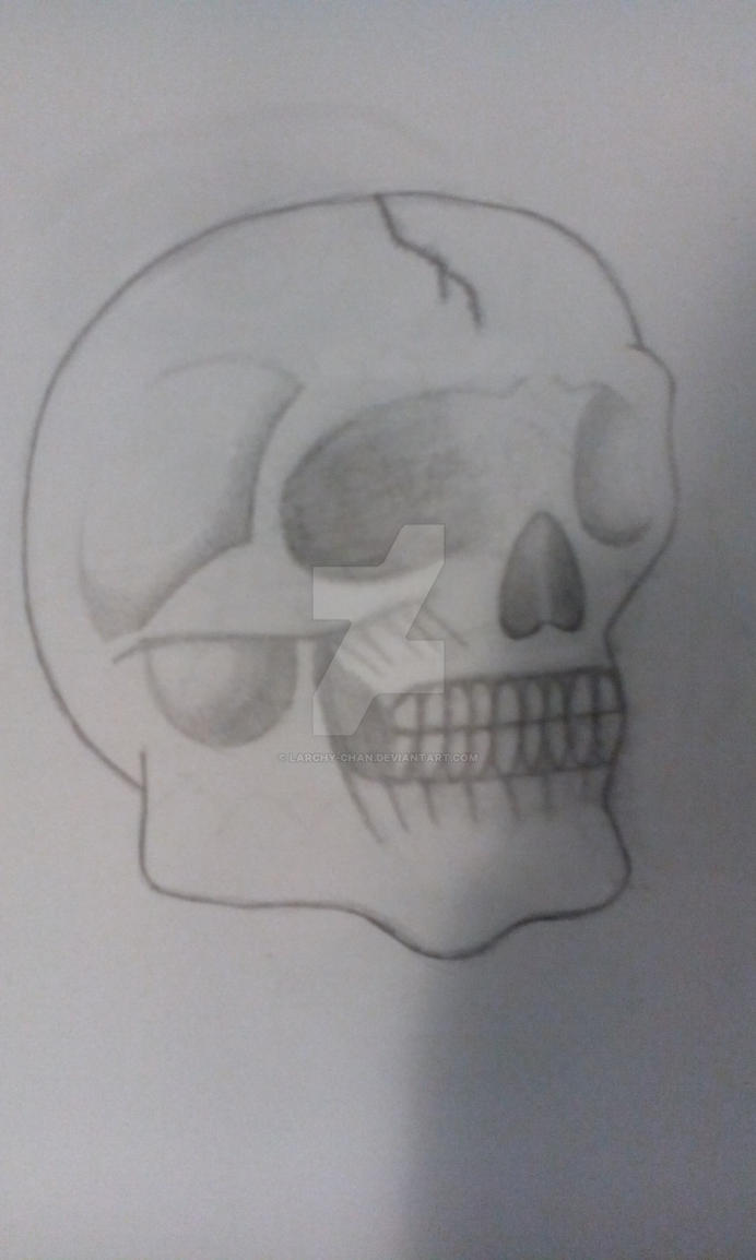Skull :D by Larchy-Chan
