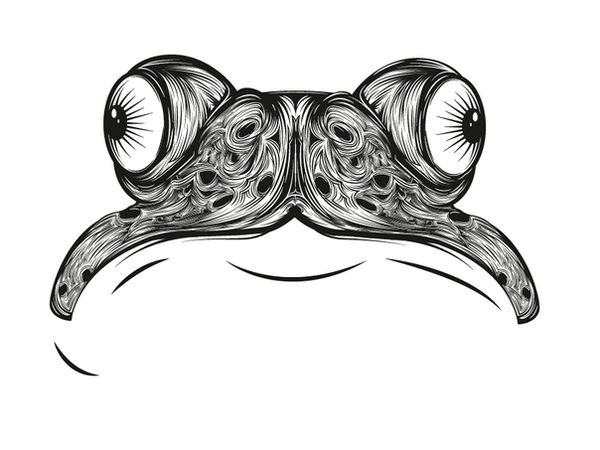 psychedelic toad_quick_update