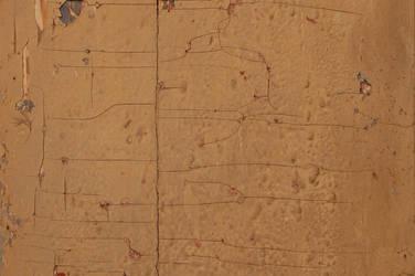 Wooden Door II