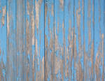 Blue Plank Wall